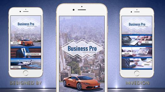 Business App - iOS